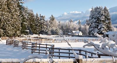 Kingston scenery following winter snow storm