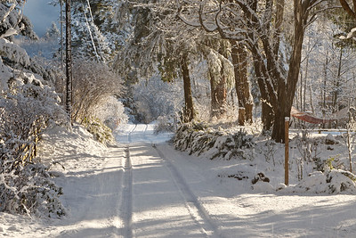 Kingston scenery following winter snow storm.  Country lane.