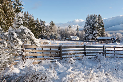 Kingston scenery following winter snow storm.  Farm with North Cascades in background.