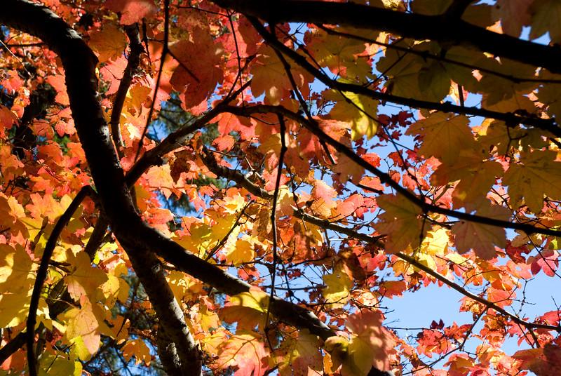 Lake Easton - October 2010