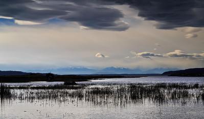 Skagit River delta