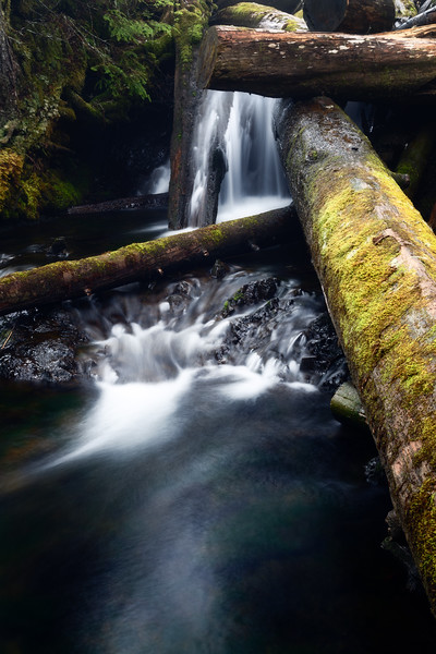 Verlot, Independence Lake - Small waterfall underneath crossing logs