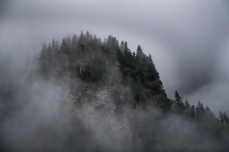 Verlot, Perry Creek - Small ridge appearing through the fog
