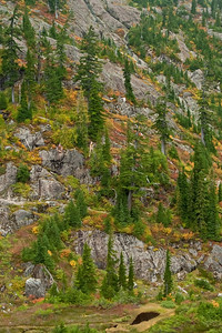 I love how the trees and colorful foliage climb the rock faces at Heather Meadows.