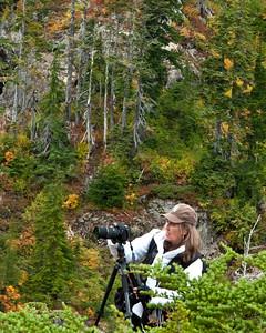 Mom in the brush!