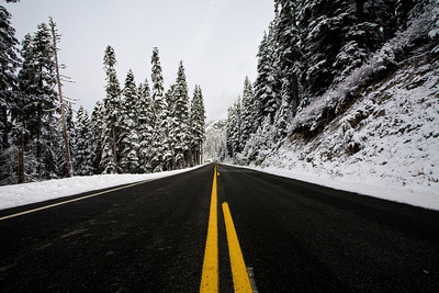 As you drive closer to Chinook Pass, the snow gets much heavier and stunningly beautiful.  You truly do feel as though you are visiting a magical place.