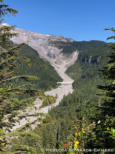 Nisqually River and Glacier