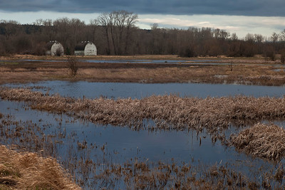 As I was walking back to the head of the trail, the lighting and colors were stunning.  The sun was about to set, and storm clouds moved in over the marsh reflecting their deep blue coloring in the water.  Love it against the gold of the grasses!!