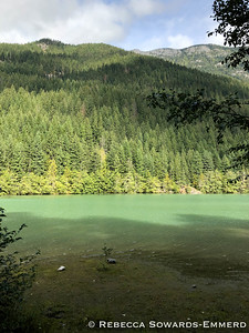 We camped at Colonial Creek campground along Thunder Creek. The color of the glacial runoff water was beautiful!