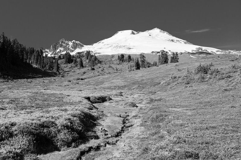 Whatcom, Park Butte - Mt. Baker and creek drainage above treeline in black and white