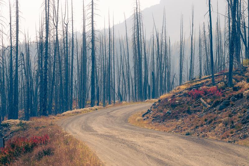 Harts Pass, Windy Pass - Smoke and haze on the road near Harts Pass