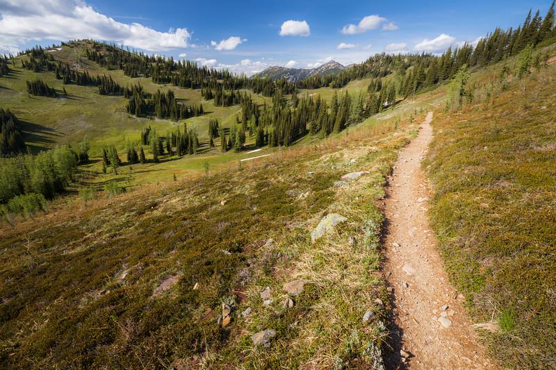 Harts Pass, Windy Pass - Pacific Crest Trail entering basin near Buffalo Pass