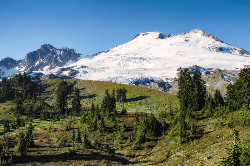 Whatcom, Park Butte - Mt. Baker on a sunny day above a green meadow