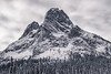 Washington Pass. Meadow - Liberty Bell mountain in snow, black and white