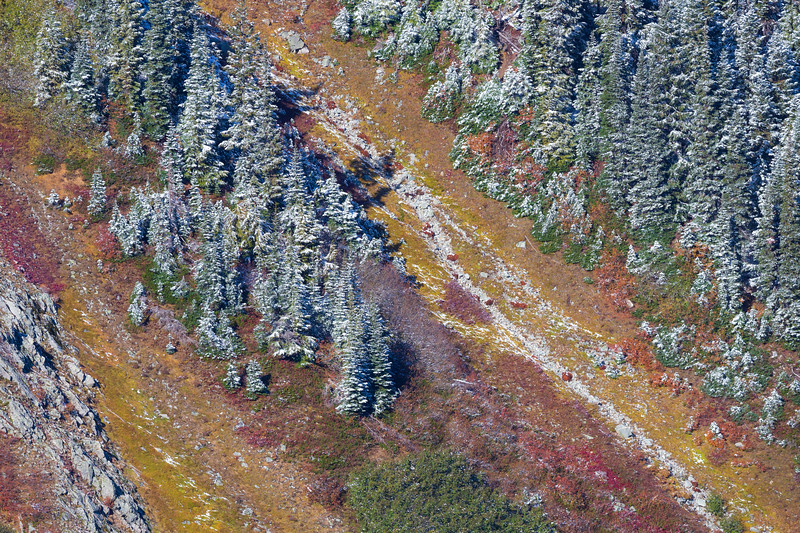 Rainy Pass. Maple Pass - Seasonal transition with fall colors and a dusting of snow on evergreen trees