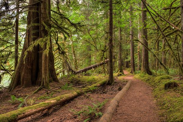 River Loop Trail