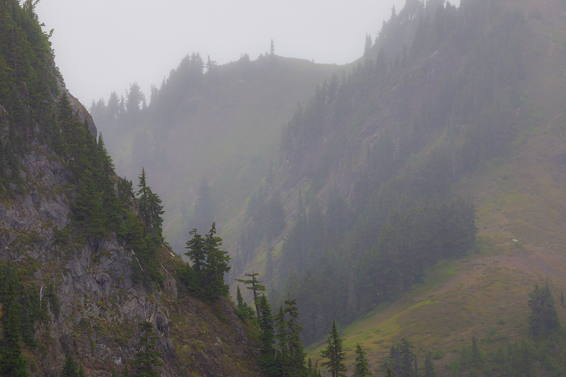 Whatcom, Winchester Mountain - Distant foggy hillside