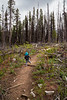 Methow, Tiffany Mountain - Little boy taking tentative steps on a trail in a clearing
