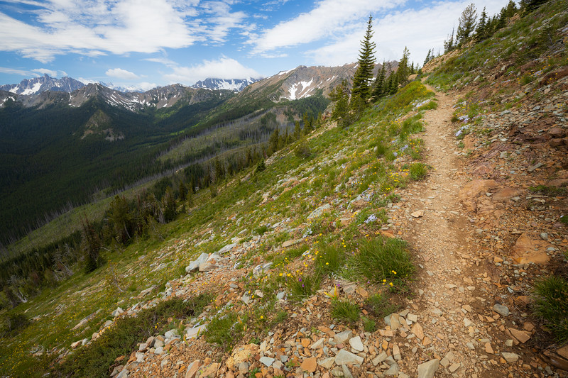 Harts Pass, Tatie Peak - Trail above a large basin with distant peaks