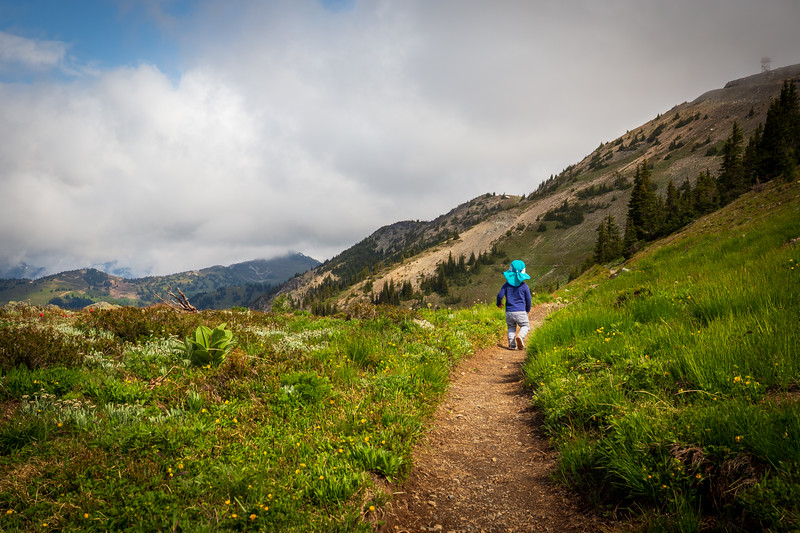 Methow, Harts Pass - Small boy walking alone on the Pacific Crest Trail towards a distant ridgeline