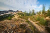 Rainy Pass, Cutthroat Pass - Trail leading towards Cutthroat Peak in morning light