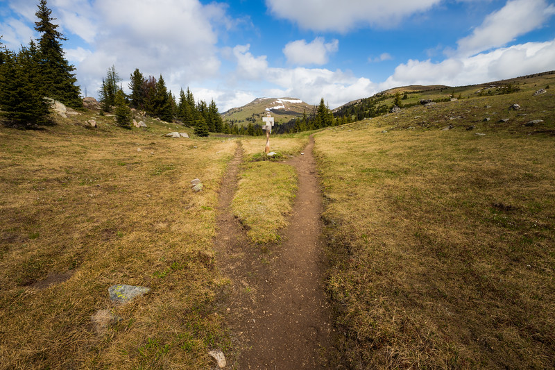Pasayten, Horseshoe Basin - Trail junction sign in the sun with Armstrong Mountain in the background, wide
