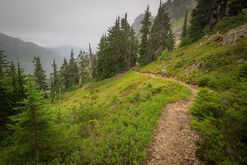 Whatcom, Winchester Mountain - Woman hiking up the trail with valley and trees