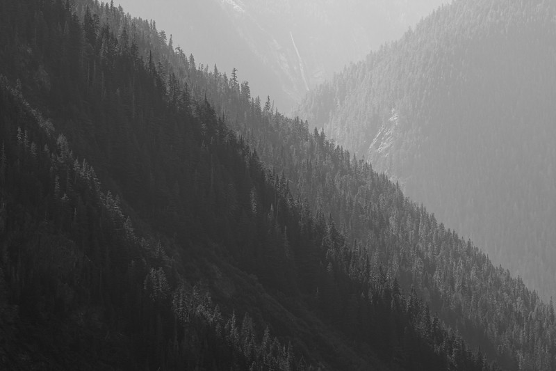 North Cascades, Cascade Pass - Intersecting ridge lines against the sun, black and white, brighter