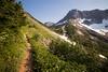 North Cascades, Cascade Pass - Trail approaching the final basin before the pass