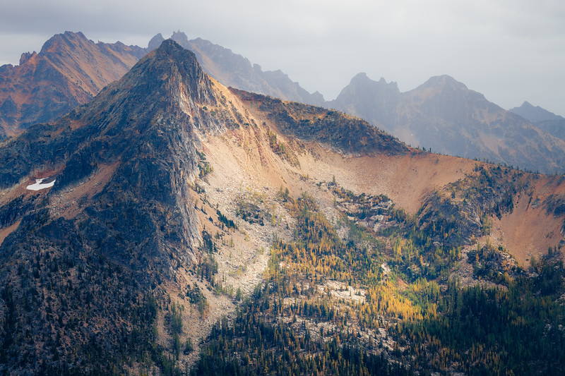 Rainy Pass, Cutthroat Pass - Hinkhouse Peak with side lighting above grove of larch, fog and rain behind