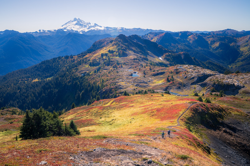 Whatcom, Yellow Aster Butte - Two hikers making way down steep trail with Mt. Baker and colorful hillside