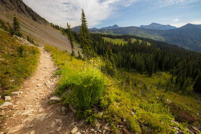 Harts Pass, Tatie Peak - Pacific Crest Trail looking north towards Harts Pass