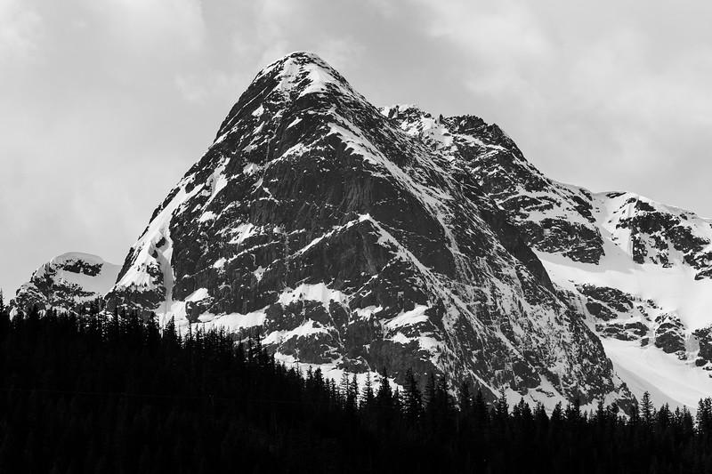 North Cascades, Diablo Lake - Pyramid Peak above the trees, black and white