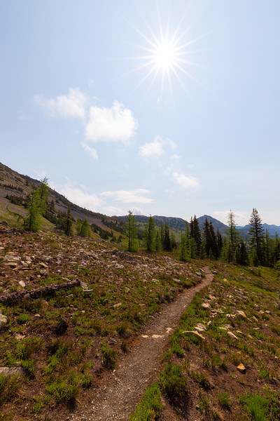 Methow, Harts Pass - Pacific Crest Trail in parkland with ridgeline and sunstar