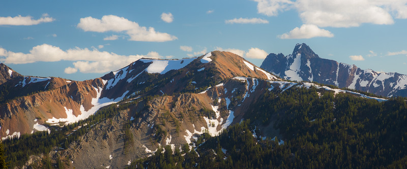 Harts Pass, Windy Pass - Colorful hill with mountains in the background