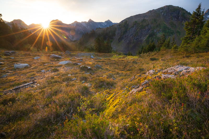 Whatcom, Winchester Mountain - Sun popping over distant ridge in meadow