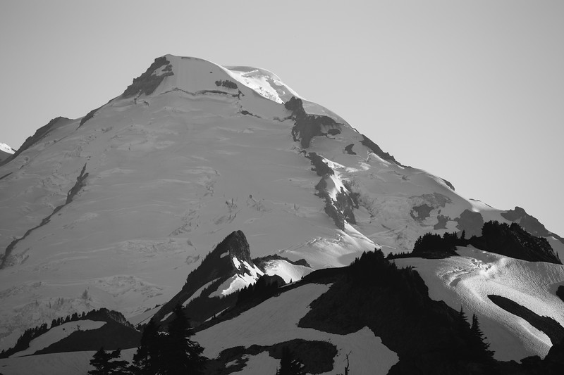 Whatcom, Artist Point - Mt. Baker at sunset in black and white