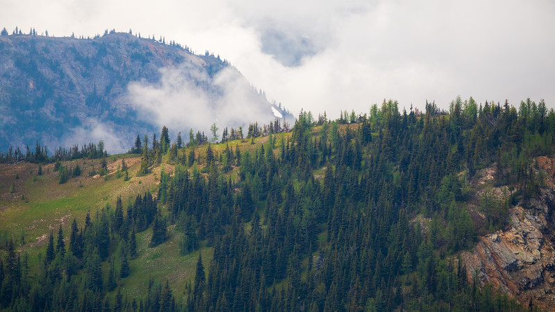 Methow, Harts Pass - Forested and overlapping ridges through the clouds
