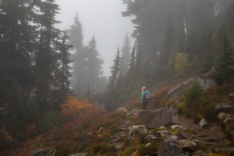 Whatcom, Artist Point - Woman hiker stars at the fog and trees on the Chain Lakes Loop