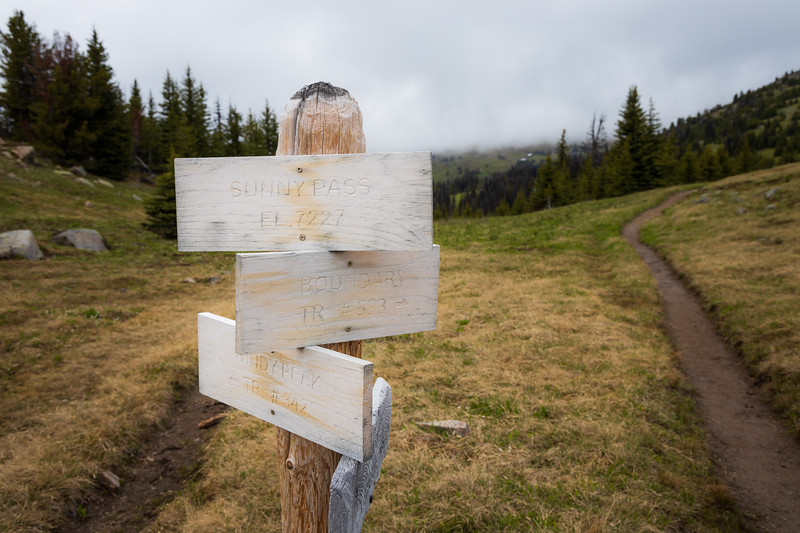 Pasayten, Horseshoe Basin - Trail junction sign close up with trail in background