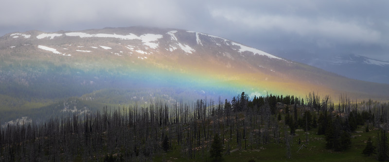 Pasayten, Horseshoe Basin - Distant rainbow framed by burned forest and distant mountain