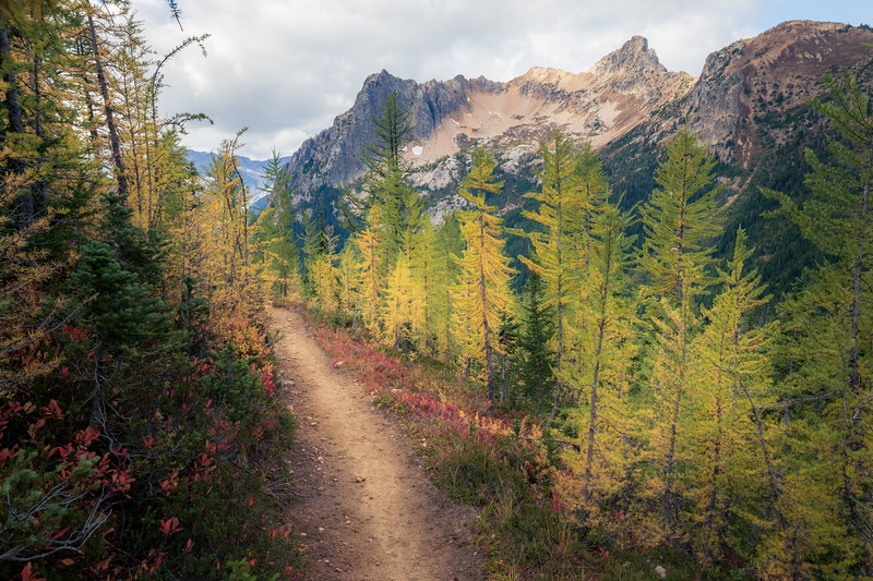 Rainy Pass, Cutthroat Pass - Trail with larch and Porcupine Peak in the distance