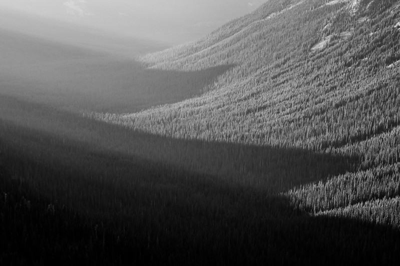 Harts Pass, Slate Peak - Shadows of peaks on forest, black and white