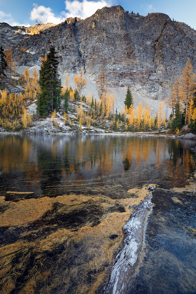 Washington Pass, Blue Lake - Tarn with fall larches, needles, and log
