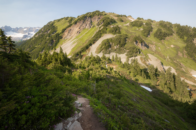 North Cascades, Cascade Pass - Lower forested part of Sahale Arm