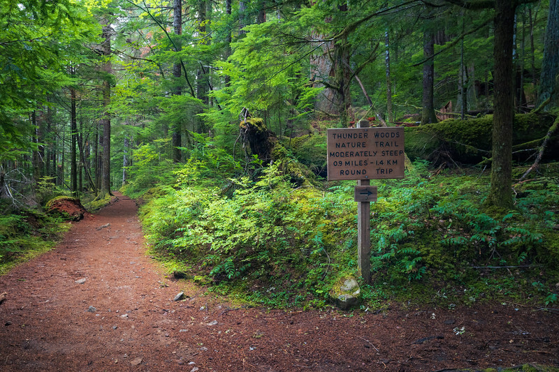 North Cascades, Thunder Creek - Thunder Creek trail intersecting the Thunder Woods trail with sign