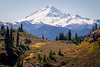 Whatcom, Yellow Aster Butte - Mt. Baker looming over meadow with evergreen trees and fall colors