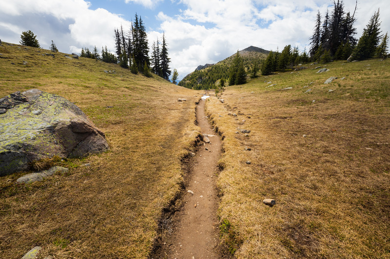 Pasayten, Horseshoe Basin - Sunny Pass trail in the sun