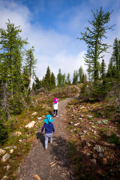 Methow, Harts Pass - Two small children on the Pacific Crest Trail walking away from the camera