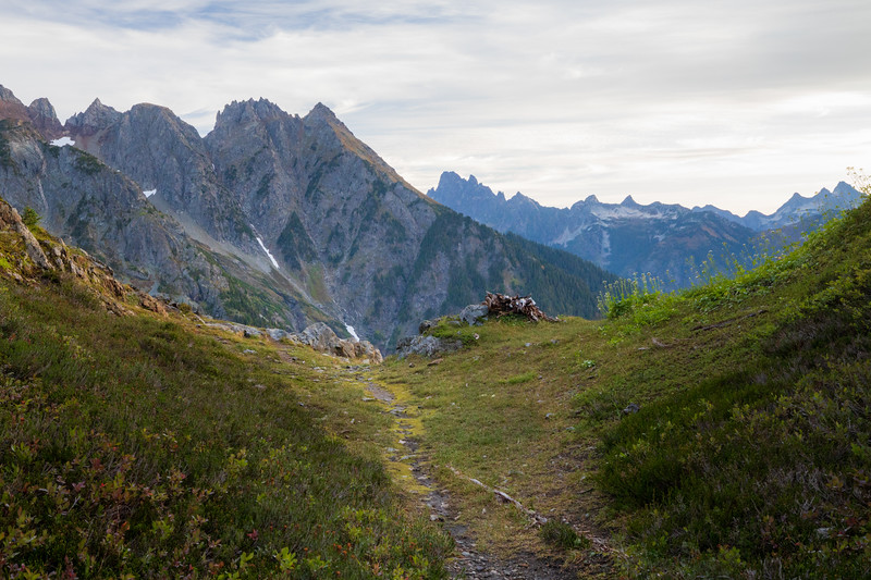 Whatcom, Winchester Mountain - Trail leading to overlook over Silesia Creek and High Pass area